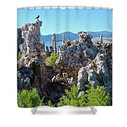 Birds On Tufa Towers-mono Lake Shower Curtain