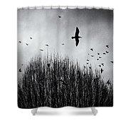 Birds Over Bush Shower Curtain