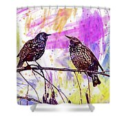 Birds Stare Nature Songbird  Shower Curtain