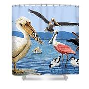 Birds With Strange Beaks Shower Curtain