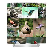 Birdsong Nature Center Collage Shower Curtain