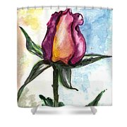 Birth Of A Life Shower Curtain