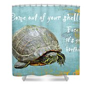 Birthday Card - Painted Turtle Shower Curtain