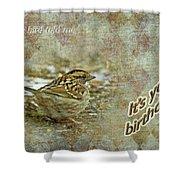 Birthday Greeting Card - White-throated Sparrow Songbird Shower Curtain