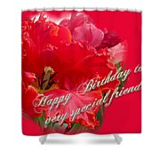 Birthday Special Friend - Red Parrot Tulip Shower Curtain