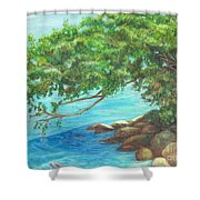Biscayne Bay Shower Curtain