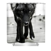 Bishop Wolf Shower Curtain