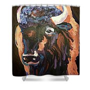 Bison At Dusk Shower Curtain