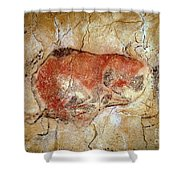 Bison From The Altamira Caves Shower Curtain