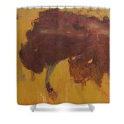Bison Herd Shower Curtain