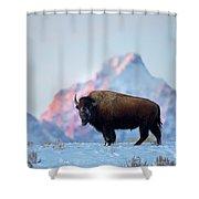 Bison Mountain Sunset Shower Curtain