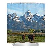 Bison Range Shower Curtain