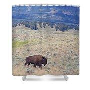 Bison Trail Shower Curtain