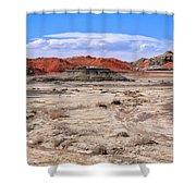 Bisti Badlands 6 Shower Curtain