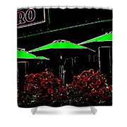 Bistro Shower Curtain
