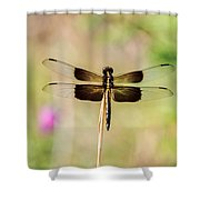 Black And Gold Dragonfly Shower Curtain
