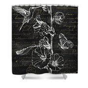 Black And Gold Hummingbirds 2 Shower Curtain