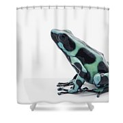 Black And Green Poison Dart Frog Shower Curtain