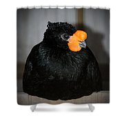 Black And Orange Shower Curtain