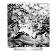 Black And Silver Shower Curtain