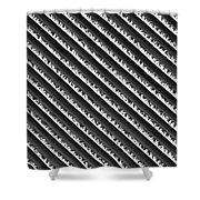 Black And White Abstract Lines Shower Curtain