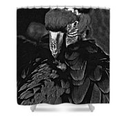 Black And White Bad Ass Bird Shower Curtain