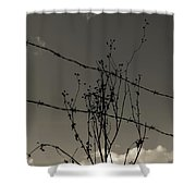 Black And White Barbwire And Branch Shower Curtain