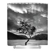 Black And White Beautiful Landscape Image Of Llyn Padarn At Sunr Shower Curtain