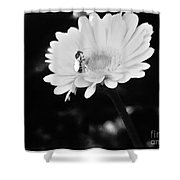 Please Remember I Am A Bee On A Flower Shower Curtain