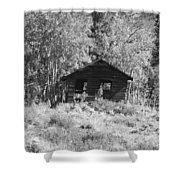 Black And White Cabin Shower Curtain