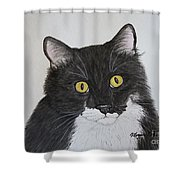 Black And White Cat Shower Curtain by Megan Cohen