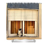 Black And White Cat On The Windowsill Shower Curtain