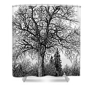 Black And White Christmas Shower Curtain