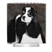 Black And White Cookie Shower Curtain