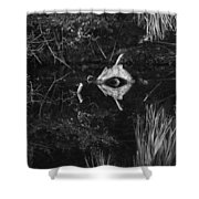 Black And White Cyclops Shower Curtain