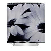 Black And White Floral Art Shower Curtain