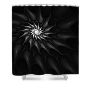 Black And White Fractal 080810c Shower Curtain