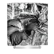 Black And White Hibiscus Shower Curtain