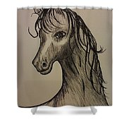 Black And White Horse Shower Curtain by Ginny Youngblood