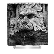 Black And White Lion Fountain On Dubrovnik Stradun, Dubrovnik, Croatia Shower Curtain