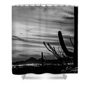 Black And White Night In Arizona Shower Curtain