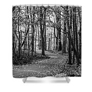 Black And White Path In Autumn  Shower Curtain