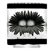 Black And White Petals Shower Curtain