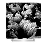 Black And White Pumpkins Shower Curtain