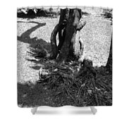 Black And White Roots Shower Curtain