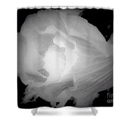 Black And White Rose Of Sharon Shower Curtain