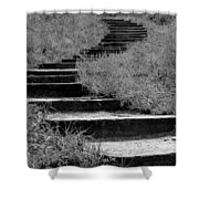 Black And White Steps Shower Curtain