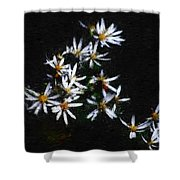 Black And White Study II Shower Curtain