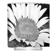 Black And White Sunflower Face Shower Curtain