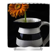 Black And White Vase With Daisy Shower Curtain